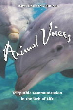 animalvoices-book-image