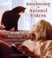 awakening-book-image